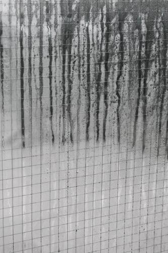 Rain Lines Inspiration Photo